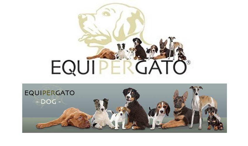 Equipergato® Logo für Dogs