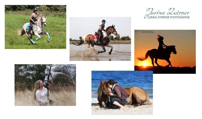 Jurina Zwirner Pferdefotos