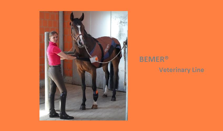 Bemer® Veterinary Line