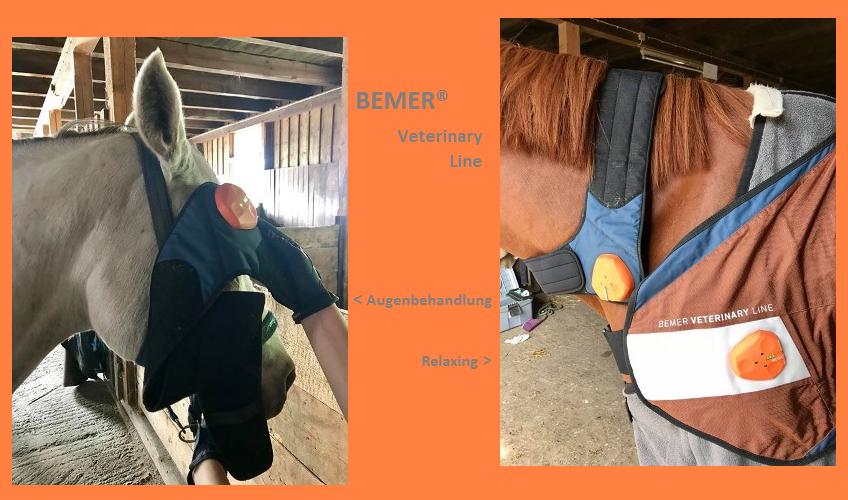 Bemer® Veterinary Line im Einsatz