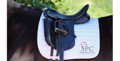 Dressurschabracke auf dem Pferd für Markenbotschafter