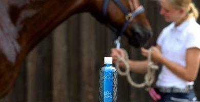 Cxevalo ® Cooling Shampoo Test mit Freddie