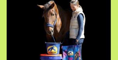 Cavalor Mash & Mix für Pferde