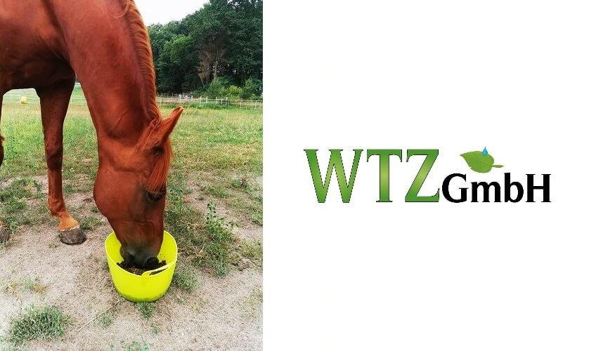 Ergänzungsnahrung für Pferde