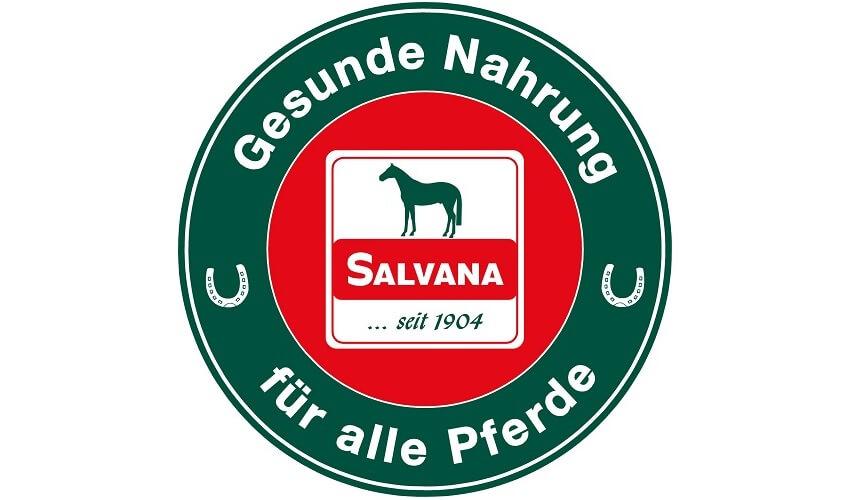 Salvana Mineralbrix Pferdeleckerli