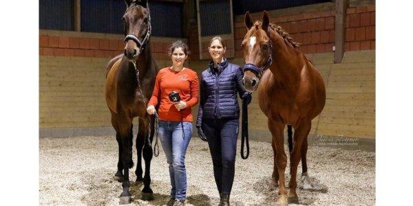 Pferdethermografie bringt jedes Pferd zum Leuchten