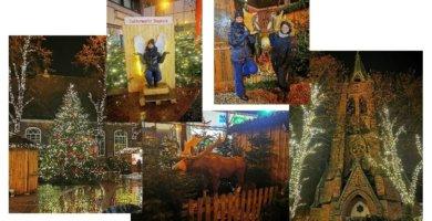 Weihnachtsmarkt in Elmshorn