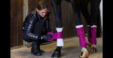 Quittpad ® Bandagierunterlagen für Pferde