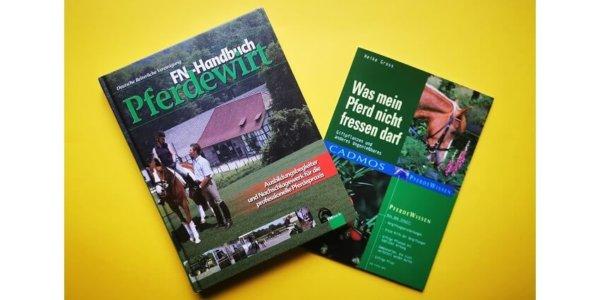 Weidepflege – zum Wohl und Schutz unserer Pferde