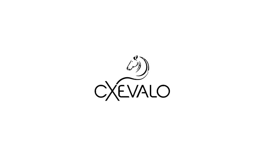 Cxevalo MSM Regenerationsgel für Pferde