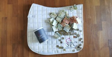 Reitsport SPC Lehrgangs-Spendendose für den Tierschutz