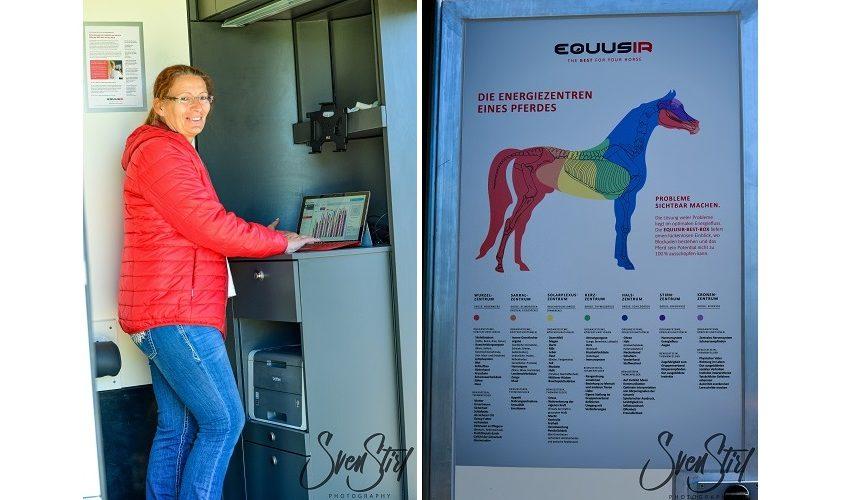 EQUUSIR BEST Box fürs Pferd