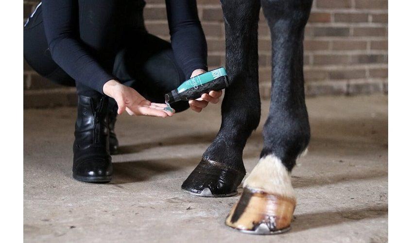Cxevalo ® MSM Regenerationsgel fürs Pferd