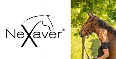 NeXaver ® Longierzaum aus Leder