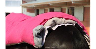 My Sole Relaxx Decke