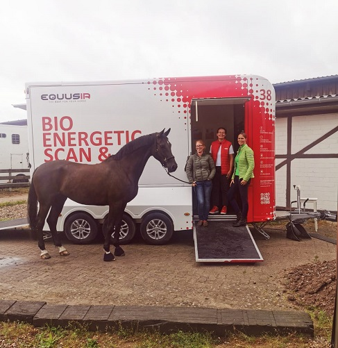 Equusir-Best-Box Verlosung