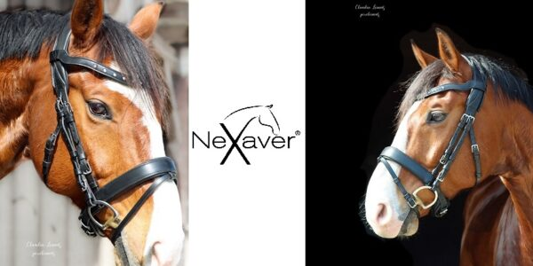 NeXaver ® eine smarte Angelegenheit für's Pferd
